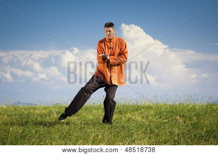 A man doing Qi-Gong in the green nature poster