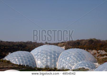 Eden Project - Main Biome