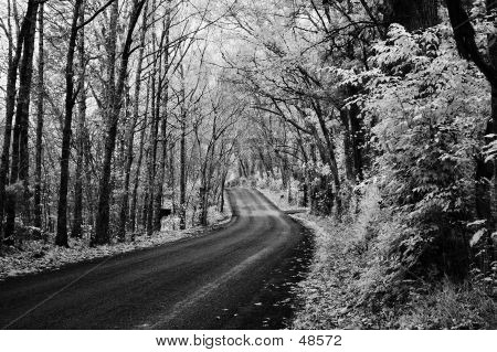 Infra-Red Road