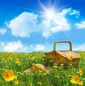 Summer picnic basket with straw hat in a field of dandelions poster