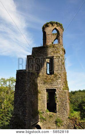 Blarney Castle Lookout