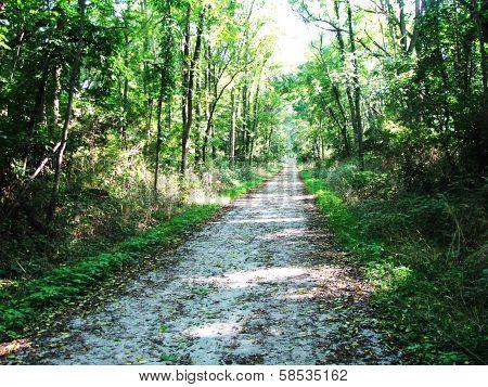 Kal-Haven Trail in Southwest Michigan