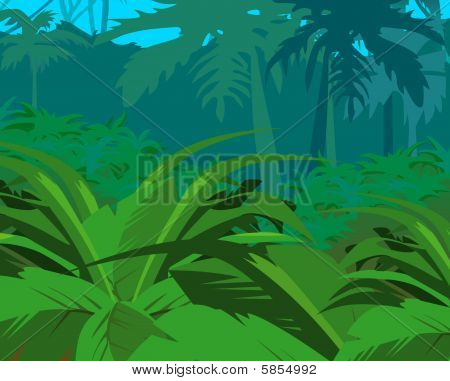 Tropical Bushes Against Jungle