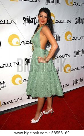 HOLLYWOOD - APRIL 30: Cora Skinner at the Larpy Awards at Avalon on April 30, 2006 in Hollywood, CA.