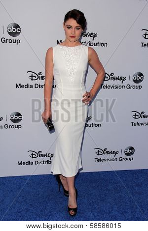Emilie de Ravin at the Disney Media Networks International Upfronts, Walt Disney Studios, Burbank, CA 05-19-13