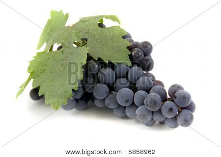 Black Grape On White