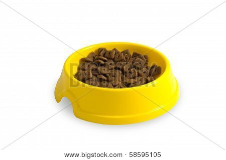 Cat Plate With Feed