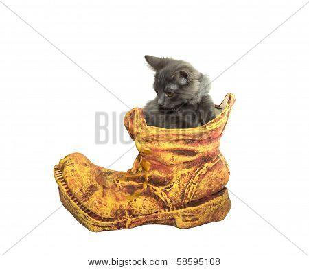 Clay Flowerpot With A Kitten