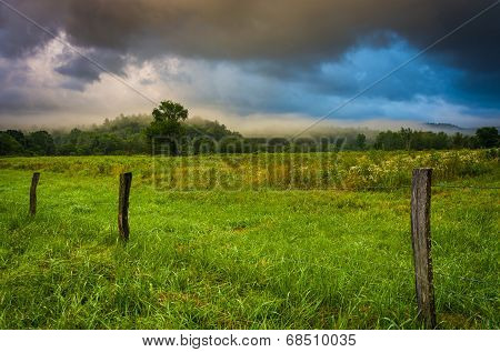 Fence And Fog In A Field At Sunrise, At Cade's Cove , Great Smoky Mountains National Park, Tennessee