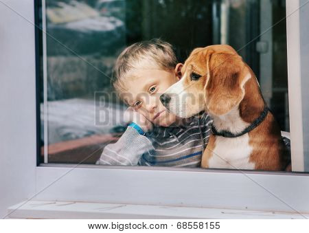 Sorrow Little Boy With Best Friend Looking Through Window