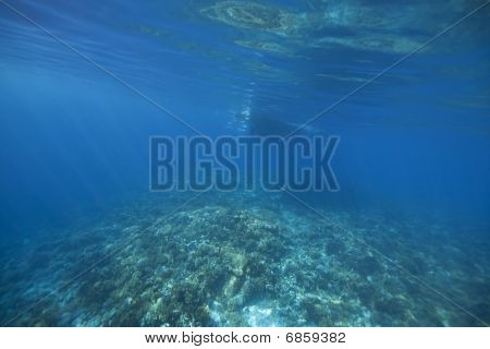 diving boat ocean and coral taken in the red sea. poster