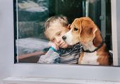 Sorrow little boy with best friend looking through window poster