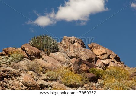 Overview Of Anza Borrego State Park