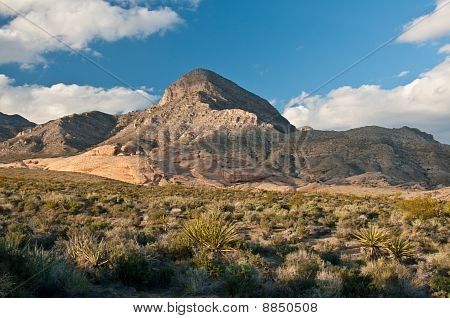Red Rock Canyon - Desert and Mountains