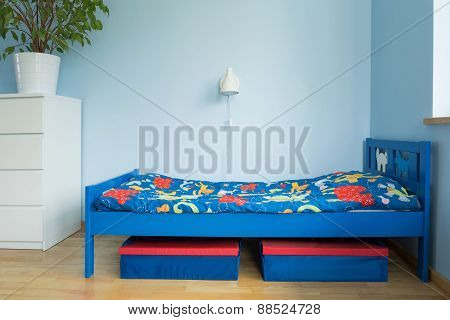 Blue Room Of A Boy