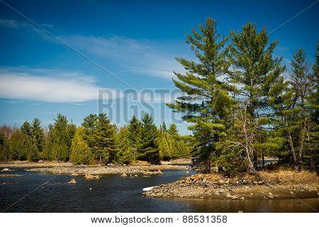 Outdoor Wilderness Lake Forest Landscape
