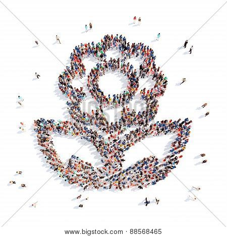 people in the shape of a flower, and ecology.