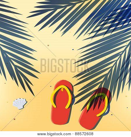 Coconut Leafs Shadow Cast On The Summer Beach Sand