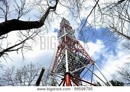 Gsm Antenna Into The Woods