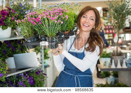 Portrait of smiling botanist carrying crate full of flower plants in store