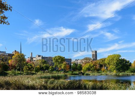 Loring Park In Autumn 5