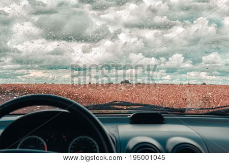 Rainy day in the car window. Wheat field after rain. Overcast weather and cloudy sky. Countryside landscape.
