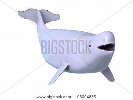 3D Rendering Beluga White Whale On White