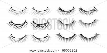 False eyelashes. Fake the cilia. A collection of six sets. Vector