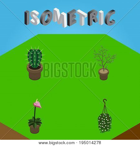 Isometric Plant Set Of Peyote, Grower, Fern And Other Vector Objects. Also Includes Hanging, Plant, Flowerpot Elements.