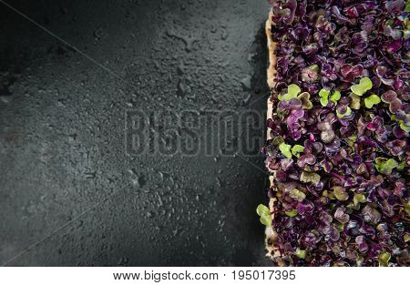 Slate Slab With Cress