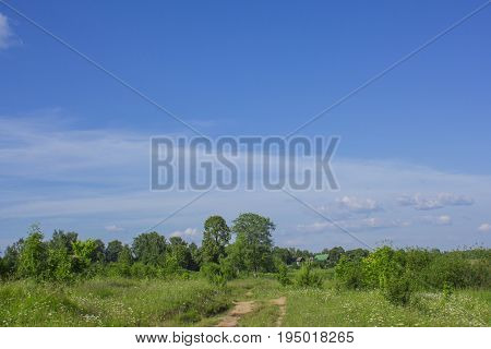 Rural road through a green field against a blue sky with clouds and two wood houses