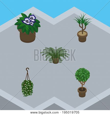 Isometric Plant Set Of Plant, Blossom, Houseplant And Other Vector Objects. Also Includes Hanging, Botany, Flower Elements.