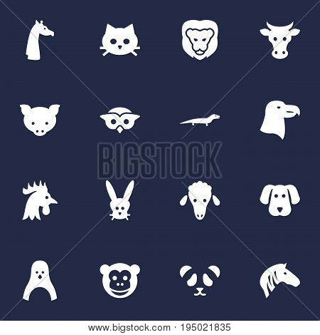 Set Of 16 Zoology Icons Set.Collection Of Lamb, Gecko, Pussy And Other Elements.