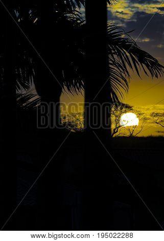 High Contrast Landscape Sunset Scene