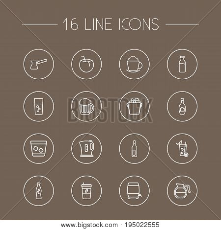 Set Of 16 Drinks Outline Icons Set.Collection Of Beer, Ice Bucket, Fizzy Water And Other Elements.