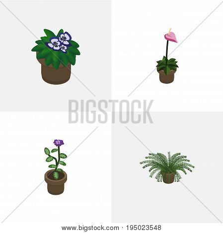 Isometric Flower Set Of Grower, Flower, Flowerpot And Other Vector Objects. Also Includes Flowerpot, Flower, Plant Elements.