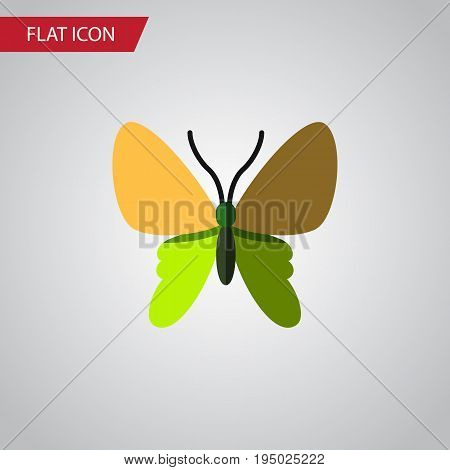 Isolated Moth Flat Icon. Beauty Fly Vector Element Can Be Used For Moth, Butterfly, Monarch Design Concept.