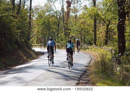 Biking through the woods