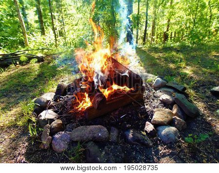stone hearth in the woods, campfire, fire, burning wood
