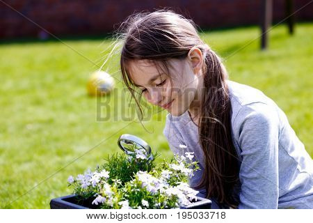 A girl with a magnifying glass on a meadow, lessons of botany