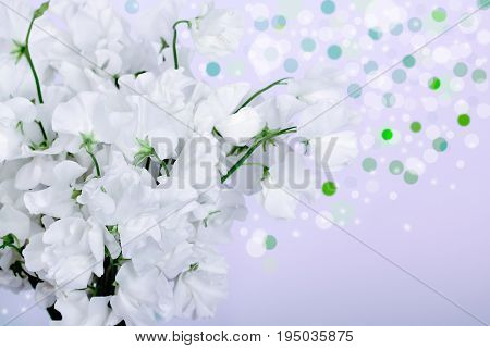 white flowers isolated on white. Nature .