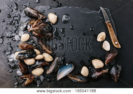 Mussels and clams over a stone background. Food frame.