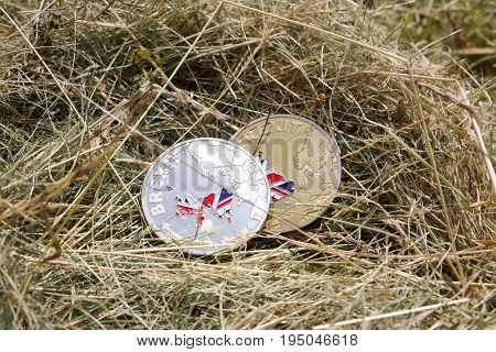 Brexit Coins In Grass