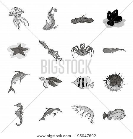 Scotland country set icons in monochrome design. Big collection of Scotland country vector symbol stock illustration