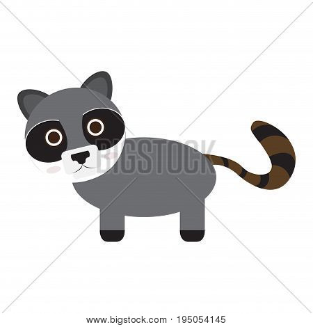 Isolated cute raccoon on a white background, Vector illustration