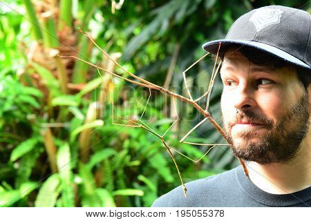 Victoria BC,Canada,July 8th 2017.A man with a hat and beard looks at the giant stick bugs that are clinging to his face in the gardens.