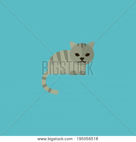 Flat Icon Cat Element. Vector Illustration Of Flat Icon Kitty Isolated On Clean Background. Can Be Used As Feline, Cat And Kitty Symbols.