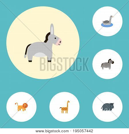 Flat Icons Wildcat, Jackass, Horse And Other Vector Elements. Set Of Alive Flat Icons Symbols Also Includes Animal, Camelopard, Hippopotamus Objects.