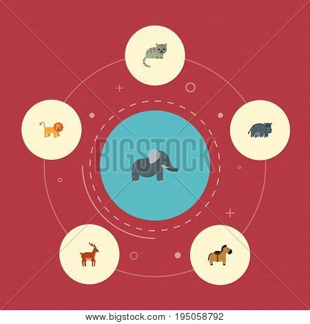 Flat Icons Wildcat, Pony, Moose And Other Vector Elements. Set Of Zoology Flat Icons Symbols Also Includes Hippo, Wildcat, Cat Objects.