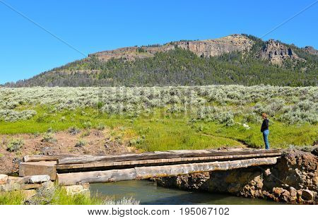 YELLOWSTONE NATIONAL PARK, WYOMING - JUNE 25, 2017: Woman on the footbridge at the Lamar River Trailhead in the Lamar Valley of Yellowstone National Park.